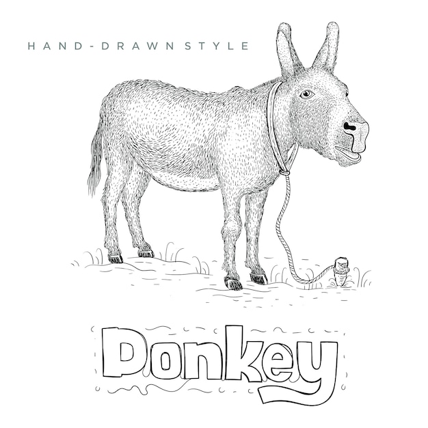 草の上に立っているロバ。手描き動物イラスト Premiumベクター