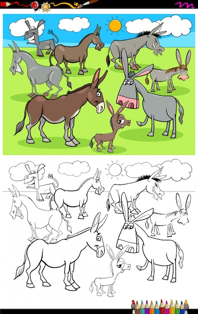 Donkeys farm animal characters group color book Premium Vector