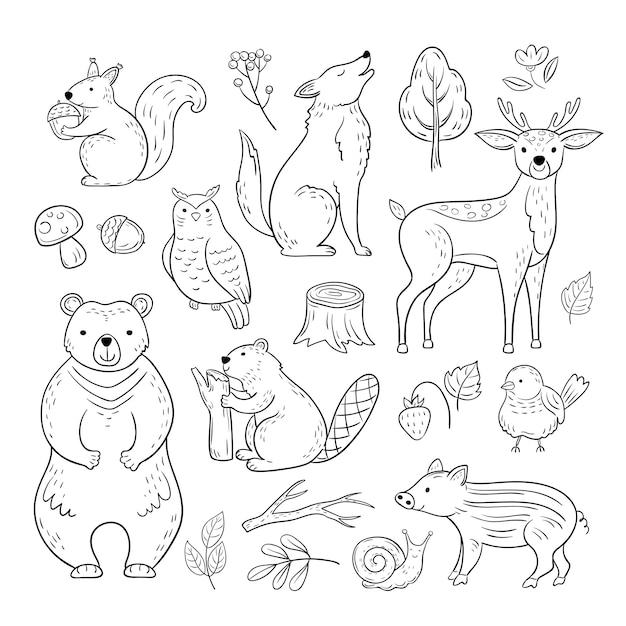 Doodle forest animals. woodland cute baby animal squirrel wolf owl bear deer snail childrens sketch  hand drawn set Premium Vector