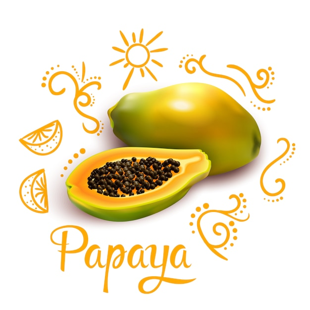 Doodles around papaya composition Free Vector