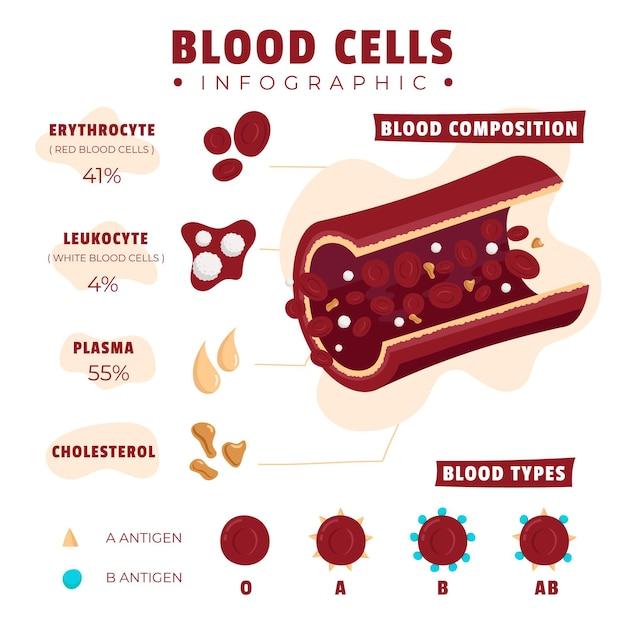 イラストの要素で描かれた血のインフォグラフィック 無料ベクター