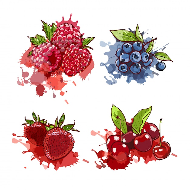 Drawn cherry, strawberry, blueberry and raspberry on watercolor splashes and spots. Premium Vector