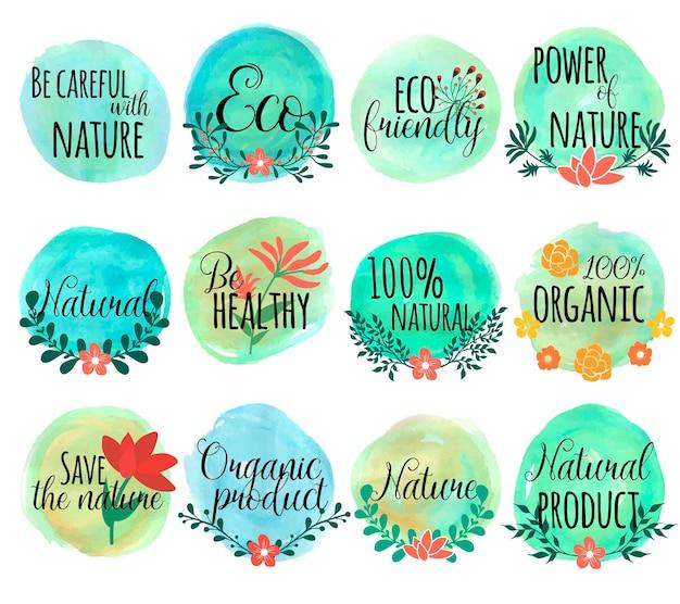 Disegnato insieme con foglie di fiori ed essere attento con il potere ecologico della natura e la natura e altre descrizioni Vettore gratuito