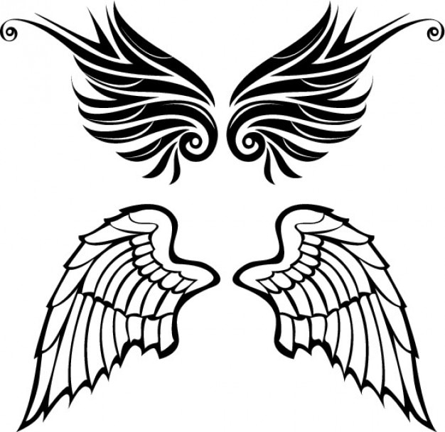 Drawn wings angel and tribal style vector set Vector ...