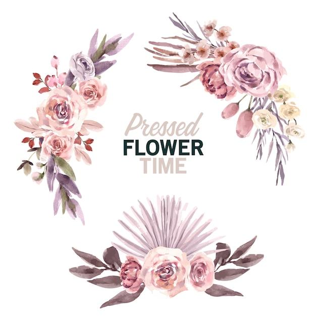 Сушеный цветочный букет акварельные иллюстрации Бесплатные векторы