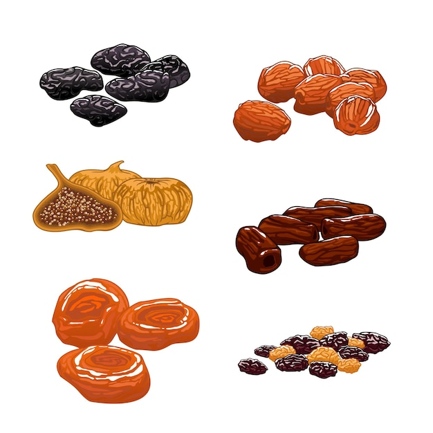 Dried fruits set. dates, figs, apricots, plums, prunes. sweet and dessert snacks Premium Vector