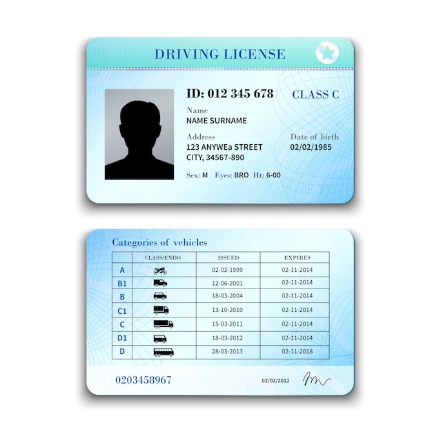 Driver license illustration Free Vector