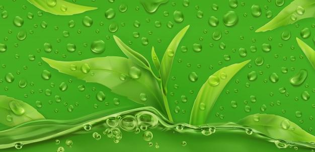 Drop of green tea, realistic vector background Premium Vector