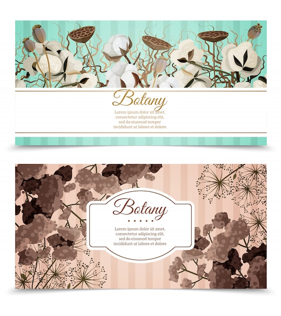 Dry flowers horizontal banners Free Vector
