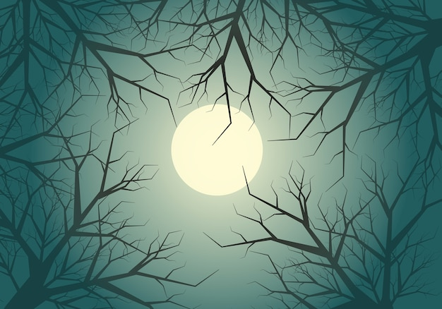 Dry twigs tree jungle moon light sky night background. Premium Vector