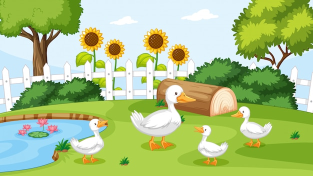Duck at the pond Free Vector