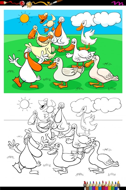 Ducks farm animal characters group color book Premium Vector