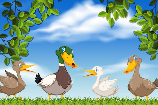 Ducks in nature scene Premium Vector