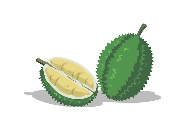 Durian is a delicious fruit Premium Vector