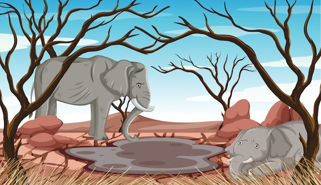 Dying elephants in drought land Free Vector