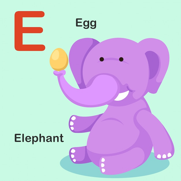 Иллюстрация изолированных животных алфавит буква e-egg, слон Premium векторы