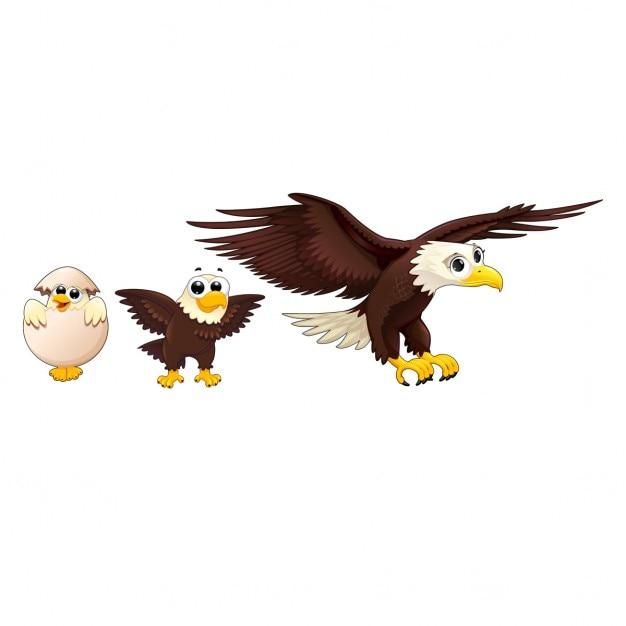 Eagle family Free Vector
