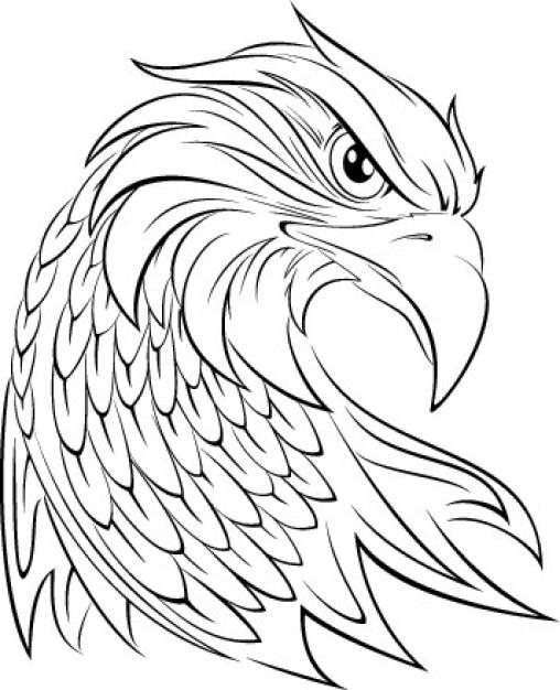 Eagle head graphic Vector | Free Download