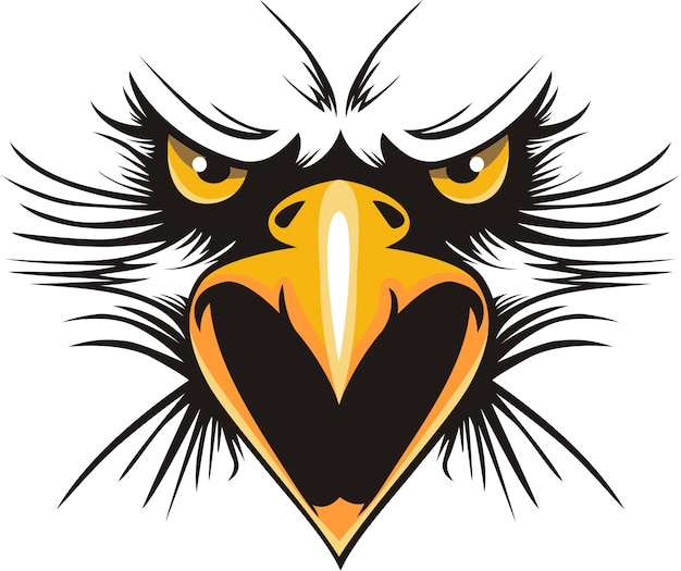 Eagle Free Vectors Stock Photos Psd