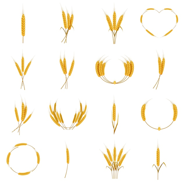 Ear corn food icons set, cartoon style Premium Vector