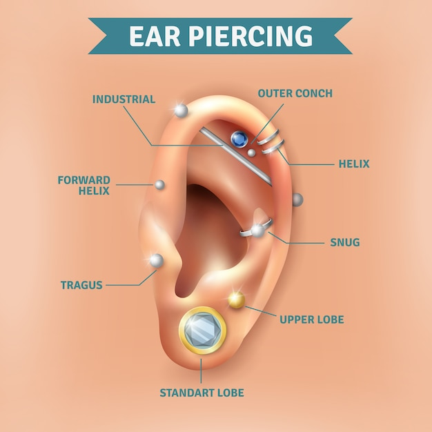 Ear piercing types positions background poster Free Vector