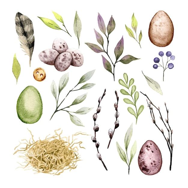 卵、羽、緑の要素を設定したイースタークリップアート。手描きの水彩イラスト。 Premiumベクター