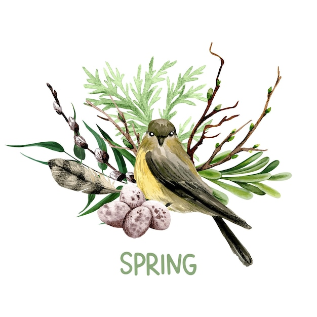 柳、鳥、羽のイースター作曲。手描きの水彩イラスト。 Premiumベクター