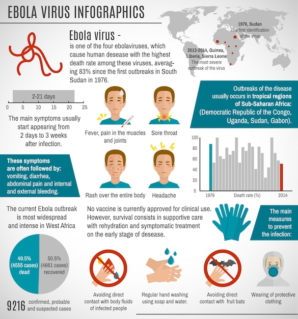 Ebola virus infographic template Free Vector