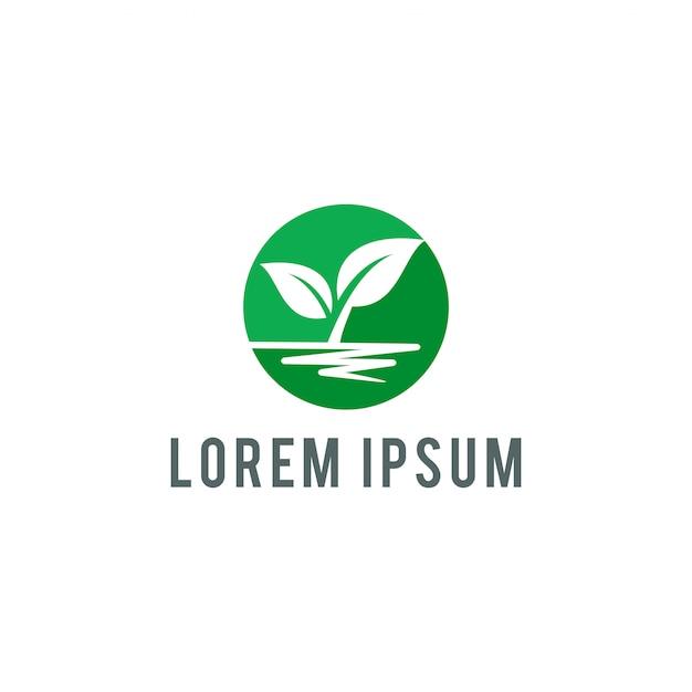 Эко лист шаблон логотипа векторные иллюстрации Premium векторы
