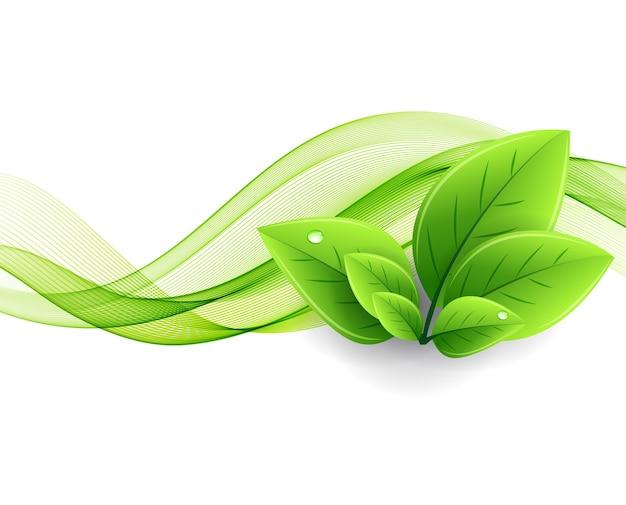 エコの葉と緑の波。抽象的な生態学の背景 Premiumベクター