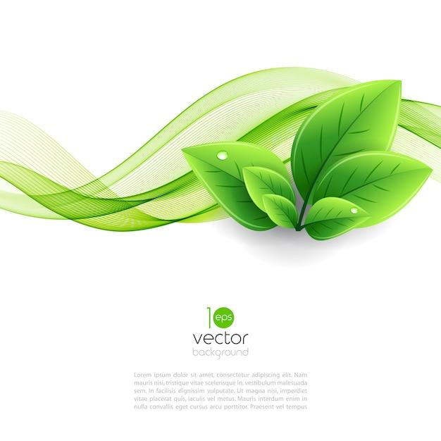 エコの葉と緑の波 Premiumベクター