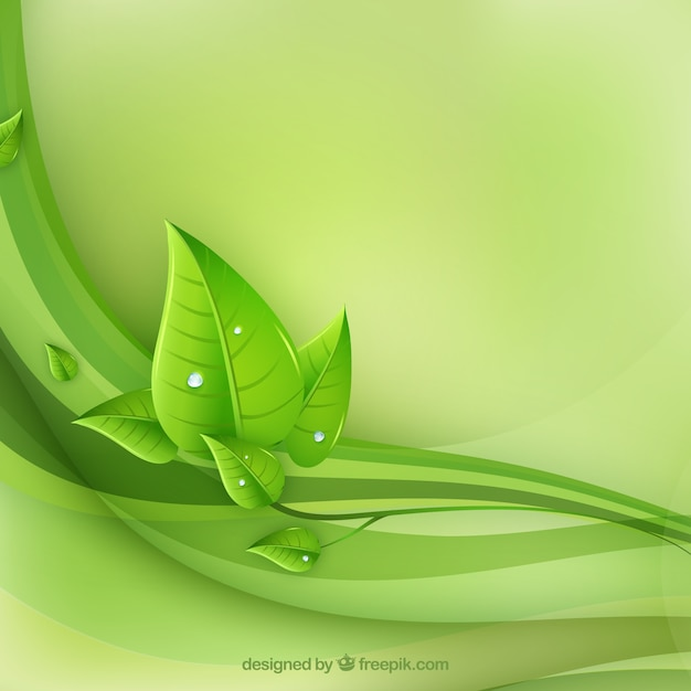 eco leaves and green waves Free Vector