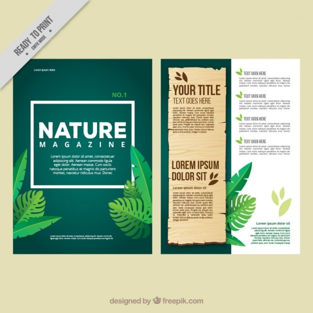 Eco magazine with leaves of jungle Free Vector