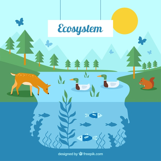 Eco system concept with animals Free Vector