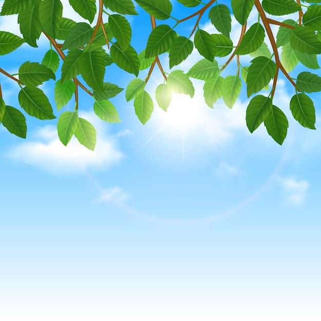 Eco world of nature friendly lifestyle green leaves and sky background border poster Free Vector