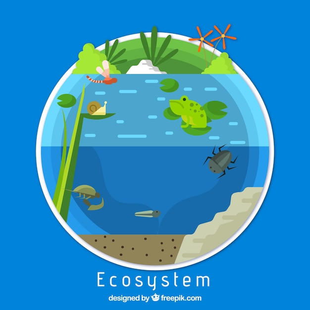Ecology and ecosystem concept Free Vector