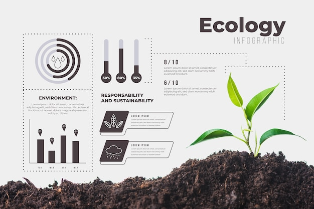 Ecology infographic with photo and details Free Vector