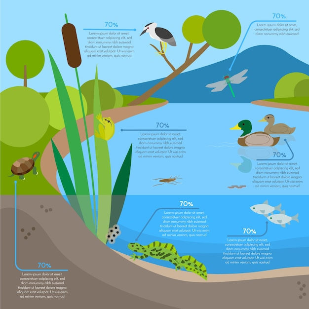 Ecosystem background infographic with animals in habitat Free Vector