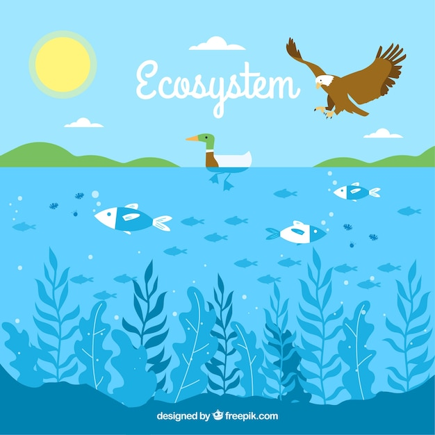 Ecosystem concept with eagle and ocean Free Vector