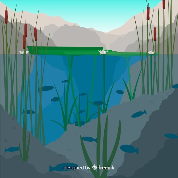Ecosystem concept with lake