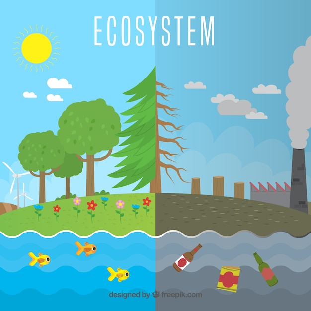 Ecosystem next to pollution concept Free Vector