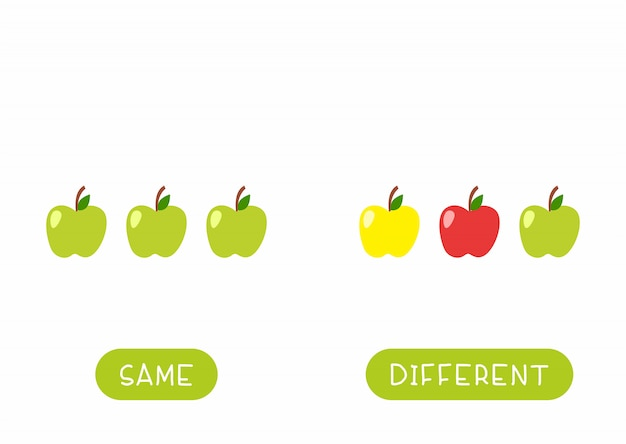 Educational word card for children template. flash card for language studying with apples. antonyms, diversity concept. same and different fruits flat illustration with typography Free Vector