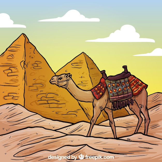 Egyptian pyramids and a camel illustration Free Vector