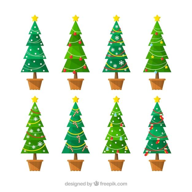 Eight tall christmas trees