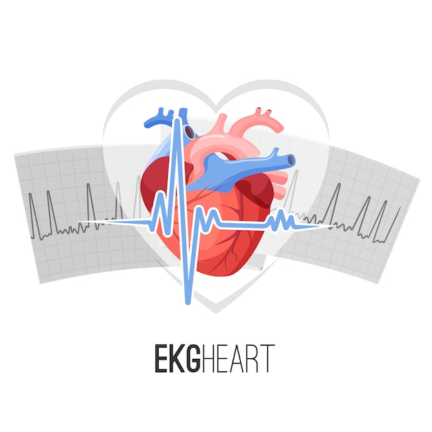 Ekg readings on paper and human heart promo emblem. Premium Vector