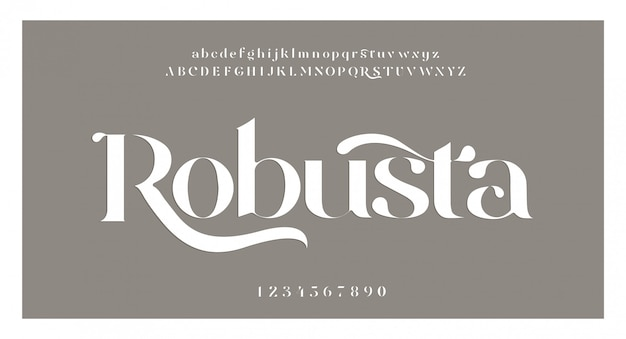 Elegant awesome alphabet letters font and number. classic lettering minimal fashion designs. typography fonts regular uppercase and lowercase. vector illustration Premium Vector
