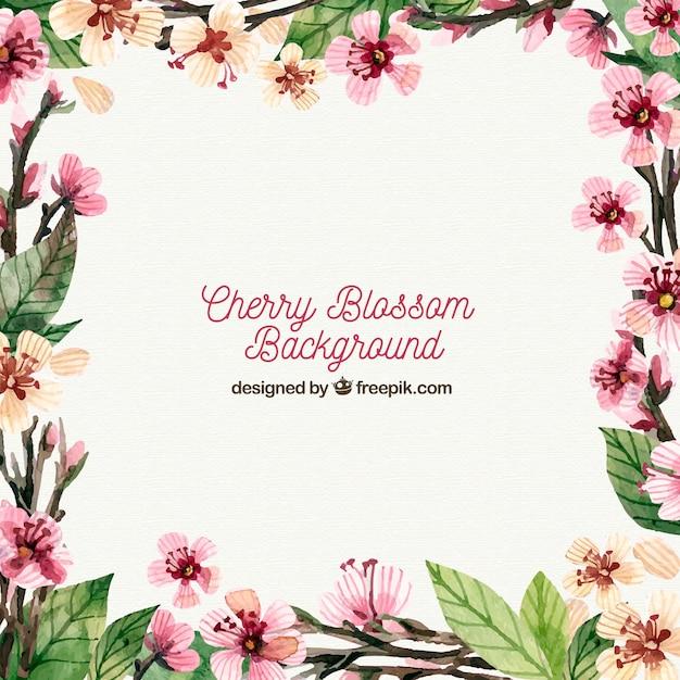 Elegant cherry blossom background Free Vector