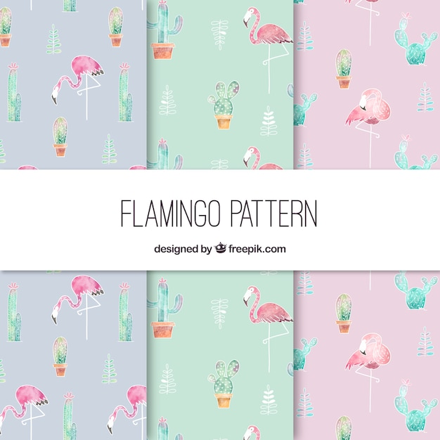 Elegant flamingo pattern Free Vector