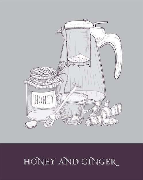 Elegant glass teapot or pitcher with strainer, cup of tea, jar of honey, ginger root and dipper hand drawn Premium Vector