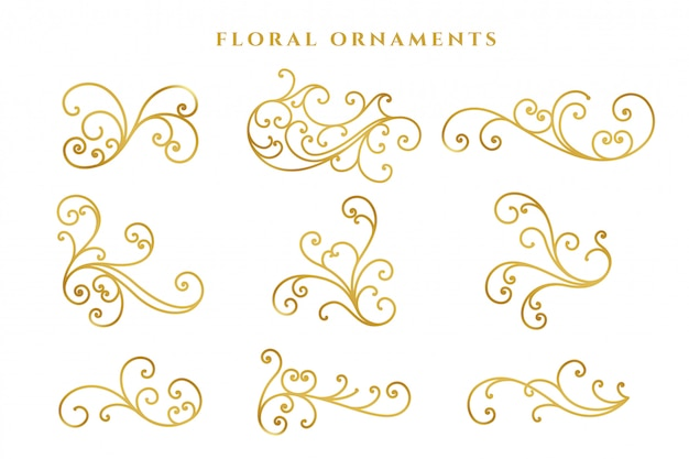 Elegant golden floral decoration big set Free Vector